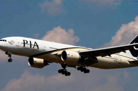 European aviation regulator bans PIA from entering into the continent