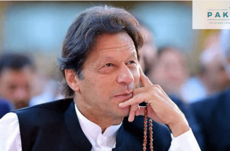 Pakistan's current account posts a surplus
