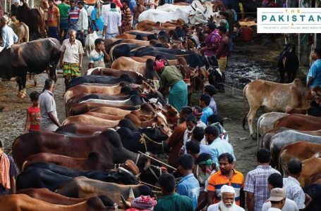 Eid ul Adha to be celebrated on August 1