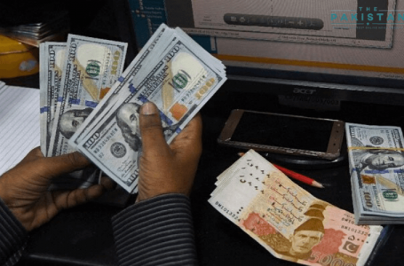 Pakistan's remittances rise to record $23 billion