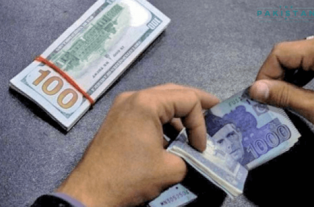 Rupee recovers lost ground to the dollar