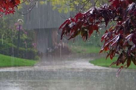 Rains forecast for Friday, Saturday