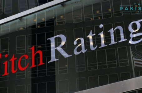 Remittances to decline, says Fitch