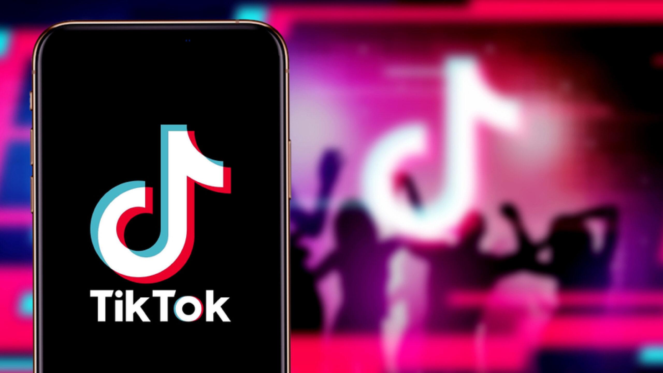 Access to 500,000 'immoral' TikTok videos blocked in Pakistan