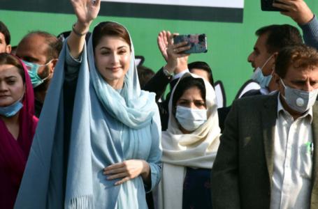 Maryam's language regrettable, 'Tabahi sarkar' confusing masses: PPP