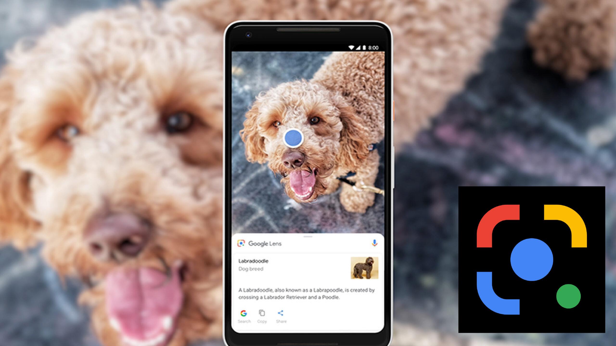 Google Lens allows automatic translation of screenshots