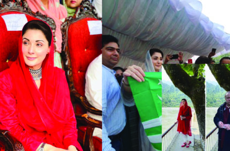 Maryam Nawaz's blunder lands her into hot waters yet again