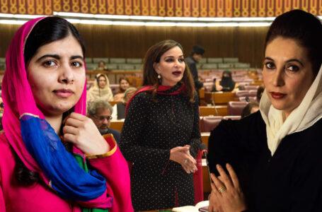 Sherry says Pakistan doesn't criminalise violence