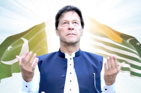 PTI wins 25 seats in AJK elections