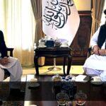 Peaceful Afghanistan in Pakistan's best interest: PM Khan